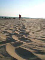 Spiaggia  - Gela (4420 clic)