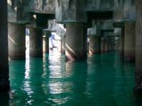 La rovina di uno dei piu' bei posti della sicilia...sotto il pontile del petrolchimico  - Gela (4487 clic)