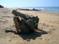 Trekking Marino... spiaggia (tossica) deserta in pieno agosto vicino al petrolchimico...  - Gela (3421 clic)