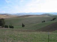 Suggestivo paesaggio dell'entroterra siciliano  - Contessa entellina (2608 clic)