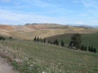Suggestivo paesaggio dell'entroterra siciliano  - Contessa entellina (2294 clic)