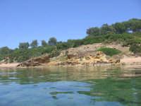 Contrada Belice Riserva Varvaro  - Porto palo di menfi (11792 clic)