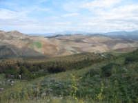 Suggestivo paesaggio dell'entroterra siciliano. Vista da Rocca D'Entella  - Contessa entellina (2445 clic)