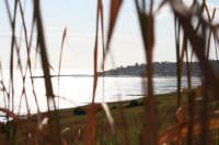 Vista dal Sirruni Cipuddazzu  - Porto palo di menfi (2247 clic)