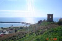 Torre saracena....  - Porto palo di menfi (16741 clic)