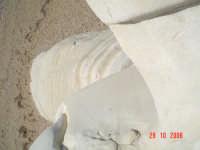 Foce del Platani.....Capo Bianco..  - Ribera (3838 clic)