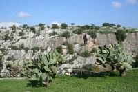 Una cornice naturale del Parco Forza.  - Ispica (1637 clic)