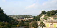 Veduta panoramica Parco forza.  - Ispica (1561 clic)