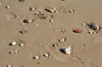 La spiaggia di Cirica.  - Ispica (1139 clic)