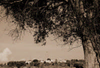 Casale di Campagna sito in C.da Valle Rotonda.  - Ispica (1564 clic)