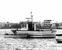 Marzameni, il porto.  - Marzamemi (7961 clic)