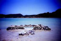 - Pantelleria (5711 clic)