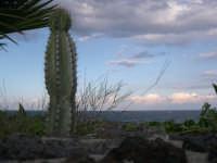 panorama marino  - Pozzillo (3295 clic)