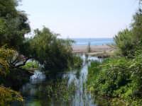 Vicino spiaggia S.Marco (Calatabiano)  - Calatabiano (5153 clic)