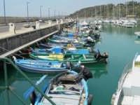 Porto rifugio  - Gela (3611 clic)