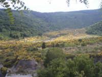 La valle colorata...  - Fondachelli fantina (6085 clic)