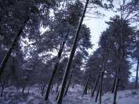 i colori della natura  - Fondachelli fantina (5174 clic)