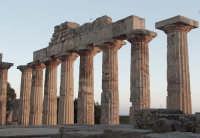 Selinunte Tempio Greco  - Castelvetrano (3265 clic)