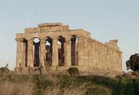 Selinunte Tempio Greco  - Castelvetrano (2787 clic)