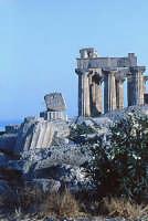 Selinunte Particolare delle rovine greche  - Castelvetrano (6408 clic)