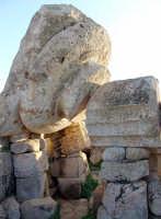 Selinunte Particolare delle rovine Greche  - Castelvetrano (3120 clic)