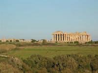 Selinunte Panoramica di un tempio Greco ricostruito  - Castelvetrano (3140 clic)