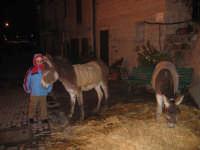 Presepe vivente Natale 2006  - Sutera (1301 clic)