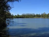Veduta lago Gurrida ambiente umido del territorio Etneo  - Randazzo (7046 clic)