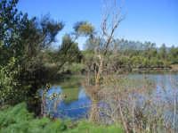 Veduta lago Gurrida  - Randazzo (2590 clic)