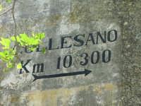 Reminescenza della Targa Florio?  - Isnello (4752 clic)