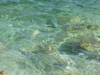 Acqua in Contrada Mazzo di Sciacca  - Scopello (2707 clic)