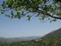 vallata verso Castelbuono  - Isnello (6152 clic)