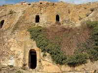 Le Grotte della Gurfa  - Alia (8791 clic)