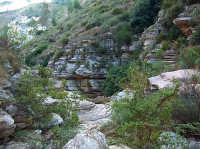 stratificazioni e rocciose nel canyon di Segesta  - Segesta (1612 clic)