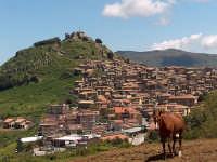 Il paese si arrampica sulla collina  - Mistretta (9420 clic)