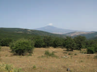 Veduta sull'Etna dalla strada per Monte Soro  - Cesarò (4335 clic)