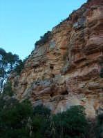 Le pareti rocciose del canyon  - Segesta (1609 clic)