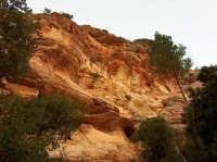 Le pareti rocciose del canyon  - Segesta (1830 clic)
