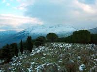 Monte Cuccio, Gennaio 2005 PALERMO Lucia Durisi