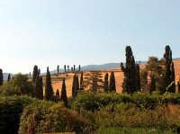 Castello di Nelson, paesaggio inusuale visto dal giardino  - Bronte (2344 clic)