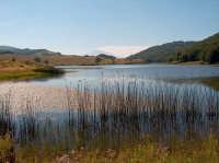 Lago di Biviere, mt. 1278 slm  - Cesarò (6239 clic)