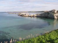 dal lungomare, veduta sul porticciolo turistico  - Terrasini (6189 clic)