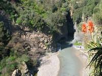Le Gole dell'Alcantara  - Motta camastra (3327 clic)