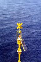 boa di segnalazione....  - Lampedusa (2483 clic)