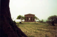 La valle dei templi  - Agrigento (4753 clic)