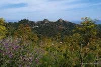 Savoca, vista panoramica (447 clic)