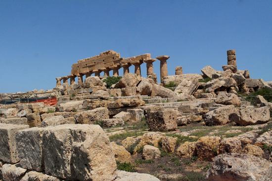 Parco Archeologico Selinunte - SELINUNTE - inserita il 19-Mar-19