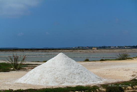 Saline della Laguna - SAN LEONARDO - inserita il 19-Mar-19
