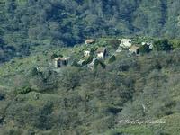 Villaggi Schisina I Villaggi Schisina sono sette piccoli villaggi costruiti dalla Regione Siciliana nel 1950, sulla Strada statale 185 di Sella Mandrazzi, nel territorio del comune di Francavilla di Sicilia (ME), con lo scopo di adibirli come abitazioni per i contadini assegnatari delle terre circostanti facenti parte di ex latifondi. I loro nomi: Schisina, Borgo San Giovanni, Bucceri-Monastero, Pietra Pizzuta, Malfìtana, Piano Torre, Morfia. I villaggi sono in stato di abbandono.  - Francavilla di sicilia (3203 clic)