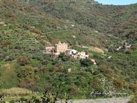 Chiesa dei Santi Pietro e Paolo di Casalvecchio Siculo (2526 clic)